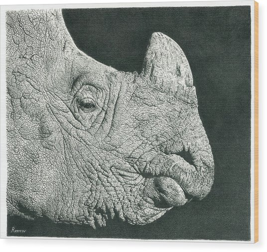 Rhino Pencil Drawing Wood Print