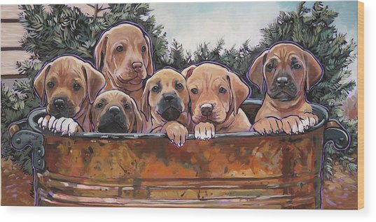 Rhodesian Ridgeback Puppies Wood Print