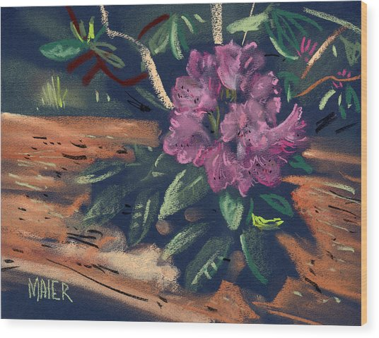 Rhododendron Wood Print by Donald Maier