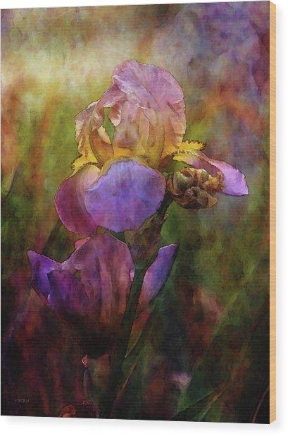 Rich Purple Irises 0056 Idp_22 Wood Print