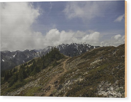 Ridge Walking In The Olympic Mountains Wood Print