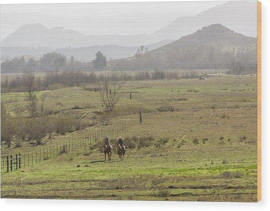 Riding The Fences Wood Print