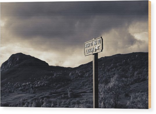 Right Of Way To Laggan Wood Print