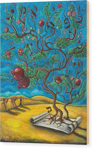 Rimon Ben Torah Wood Print
