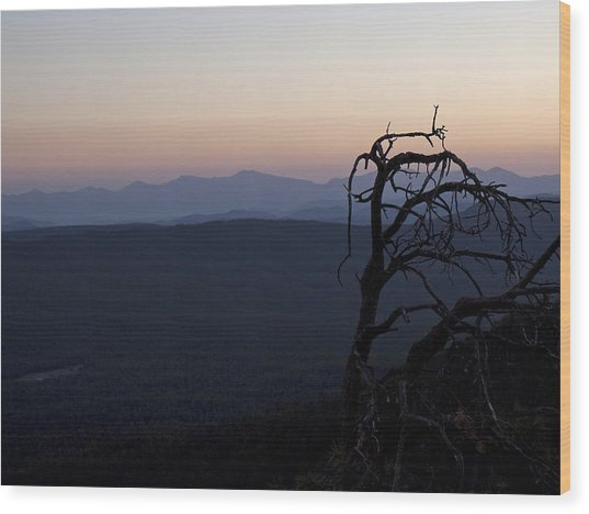 Rimset Wood Print by Lionel Martinez