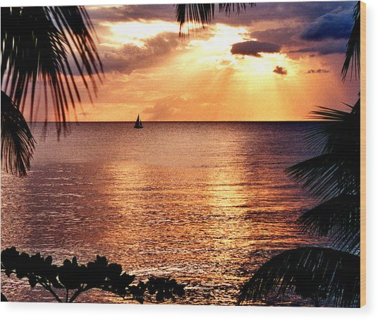 Rincon Sunset Wood Print by Michael  Cryer