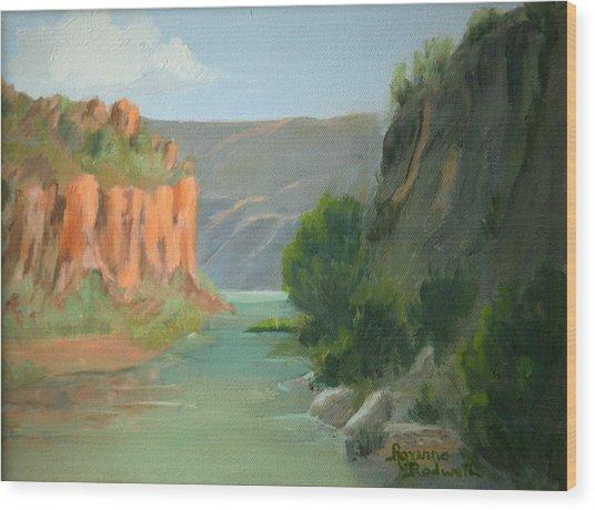 Rio Grande Canyon Wood Print by Roxanne Rodwell