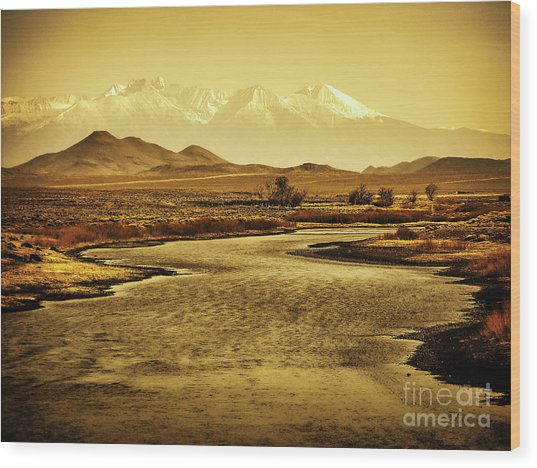 Rio Grande Colorado Wood Print