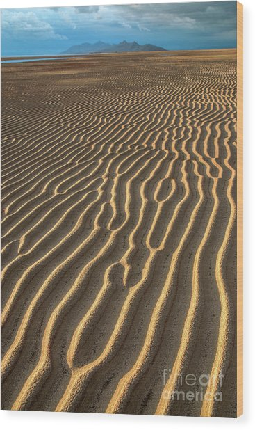 Wood Print featuring the photograph Ripples In Late Sunlight by Spencer Baugh