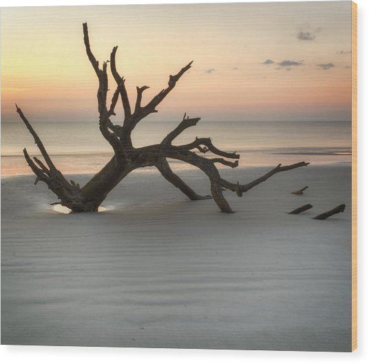 Ripples Of Sand And Driftwood Wood Print