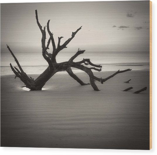 Ripples Of Sand And Driftwood Sepia Wood Print