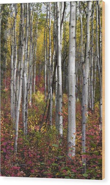 Riser Wood Print