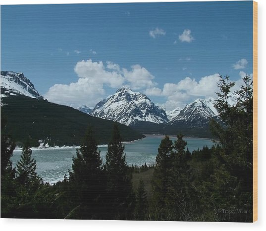 Rising Wolf And Two Medicine Lake Wood Print