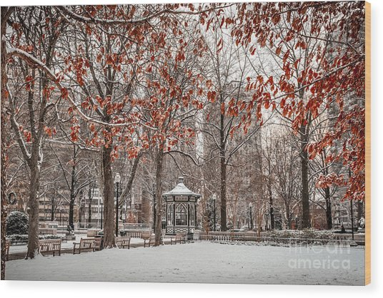 Rittenhouse Snowscape Wood Print