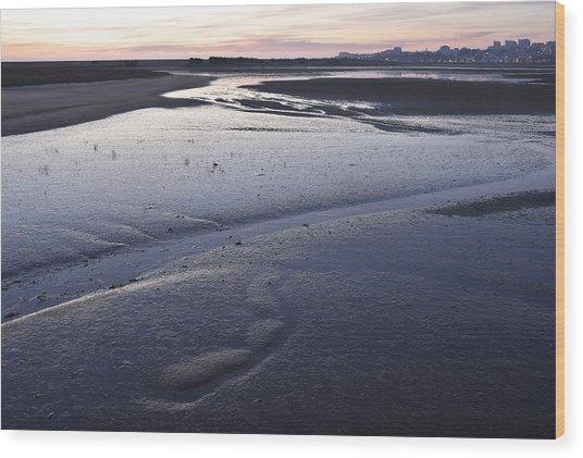 Dusky Wetlands Wood Print