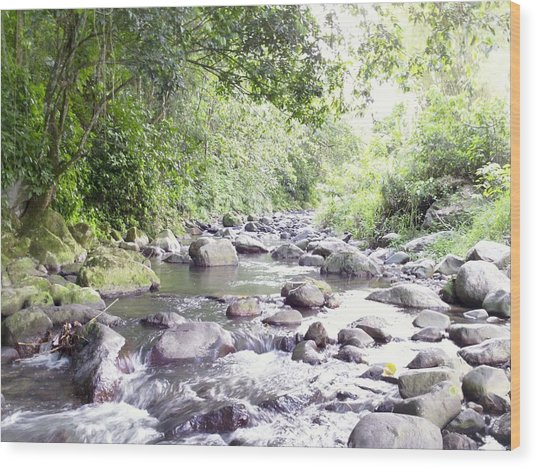 River In Adjuntas Wood Print