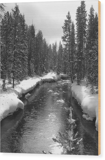 River In Yellowstone Wood Print