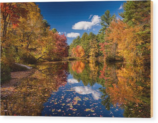 River Mirage Wood Print