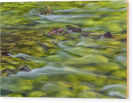 River Moss Wood Print by Leland D Howard