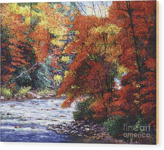 River Of Colors Wood Print by David Lloyd Glover
