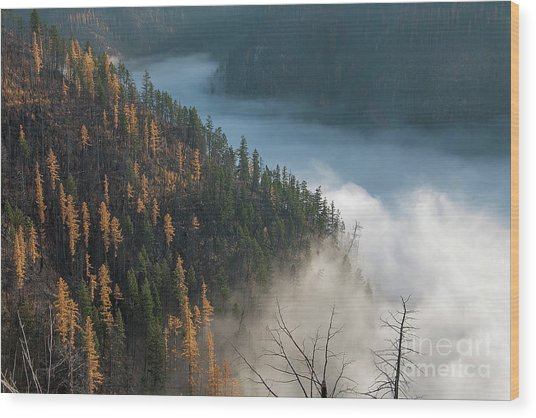 River Of Mist Wood Print