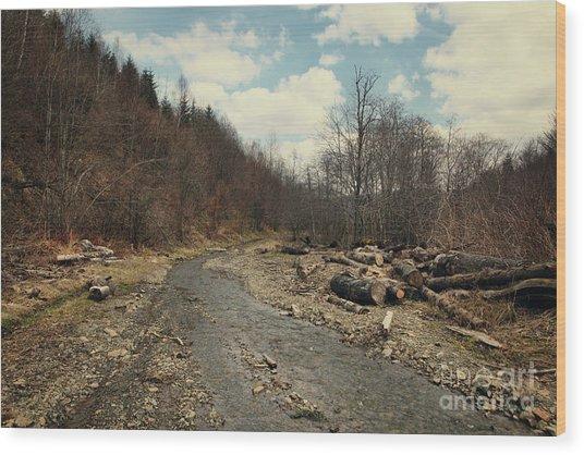 River On The Road Wood Print by Mykola Romanovsky
