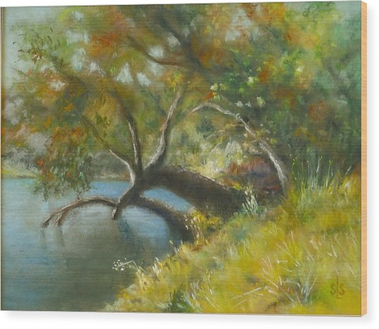 River Reverie Wood Print