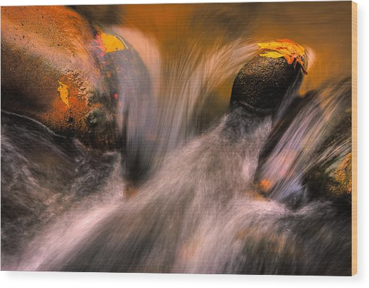 River Rocks, Zion National Park Wood Print