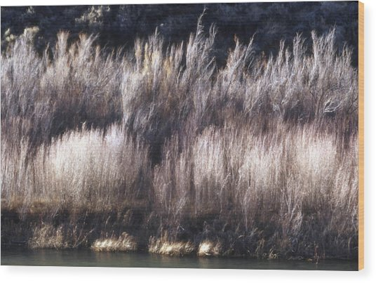 River Sage Wood Print by Lynard Stroud