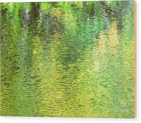 River Sanctuary Wood Print