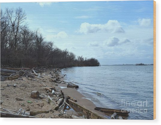 Delaware River Shoreline Wood Print