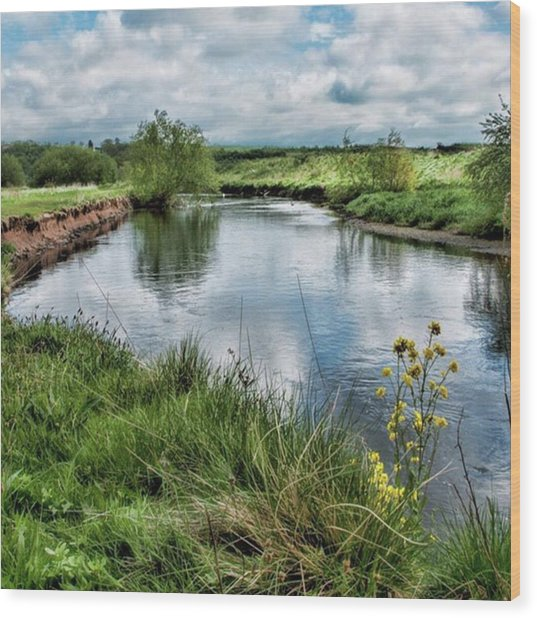 River Tame, Rspb Middleton, North Wood Print