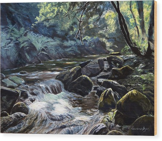 River Taw Sticklepath Wood Print