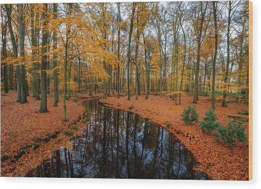 River Through Autumn Wood Print