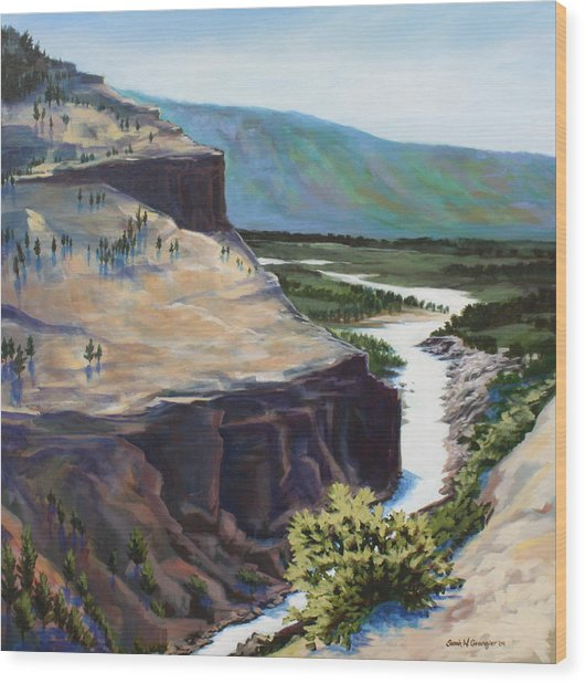 River Through The Canyon Wood Print