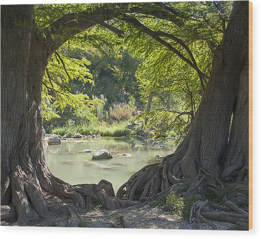 River Through Trees Wood Print