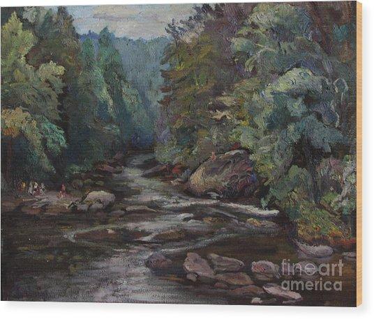 River Valley Visit Wood Print by Maris Salmins