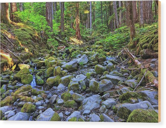 Riverbed Full Of Mossy Stones With Small Cascade Wood Print