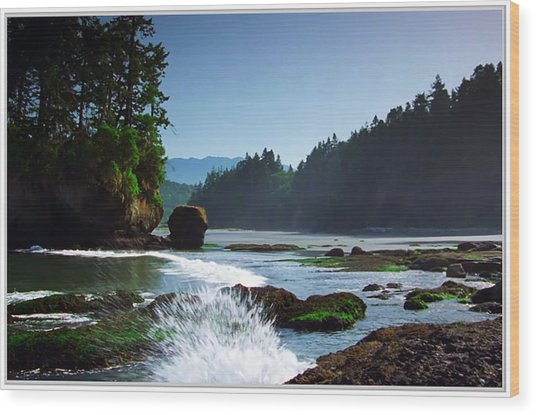 Rivers And Lakes Around Olympic National Park America Wood Print