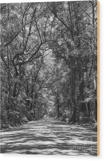 Road To Angel Oak Grayscale Wood Print