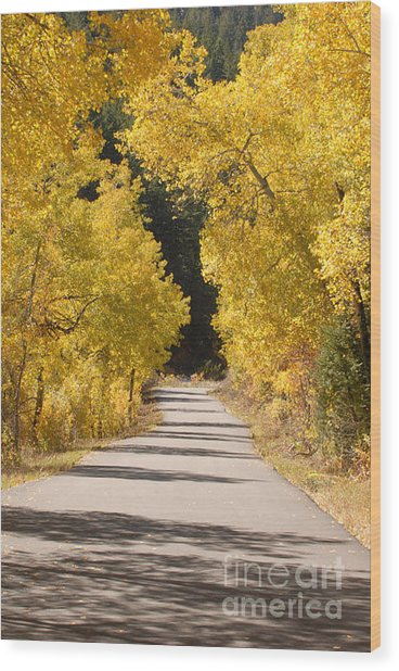 Road To Autumn Wood Print by Dennis Hammer