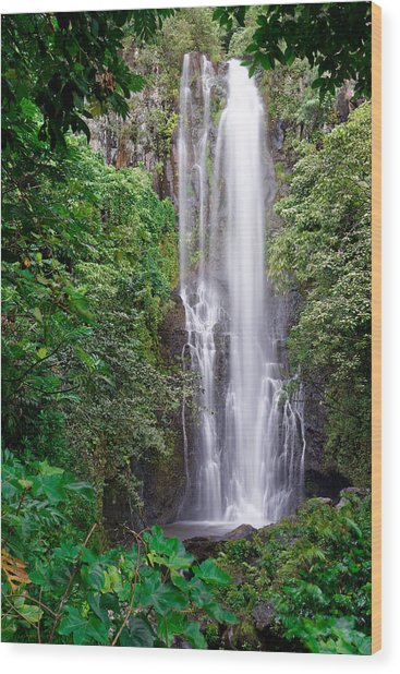 Maui - Road To Hana #2 Wood Print