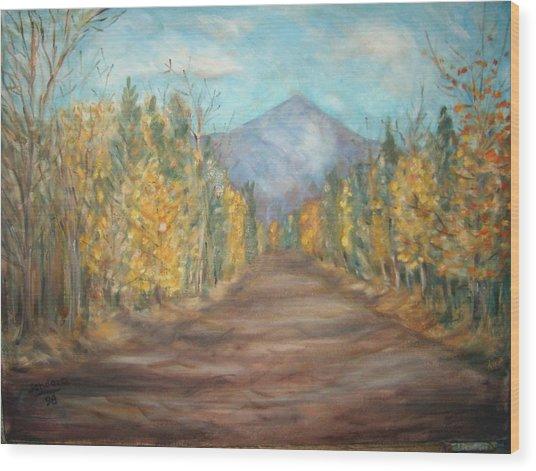 Road To Mountain Wood Print by Joseph Sandora Jr