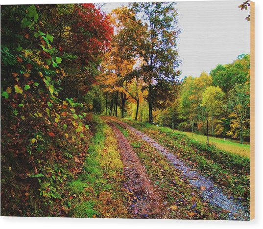 Road To My Farm Wood Print by Terry  Wiley