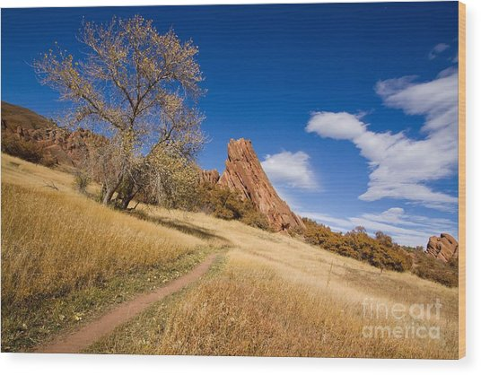 Road To The Rocky Blue Wood Print by Andrew Serff