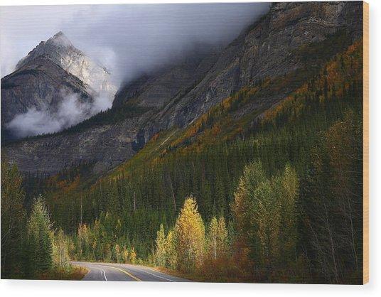Roadside Landscape At Banff National Park Wood Print
