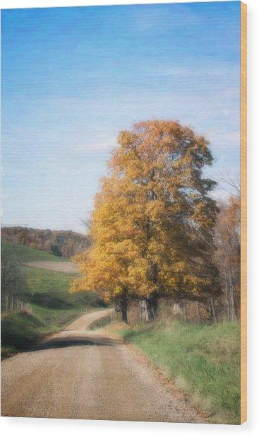 Roadside Tree In Autumn Wood Print