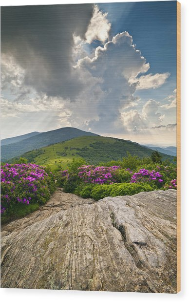 Roan Mountain Rays- Blue Ridge Mountains Landscape Wnc Wood Print