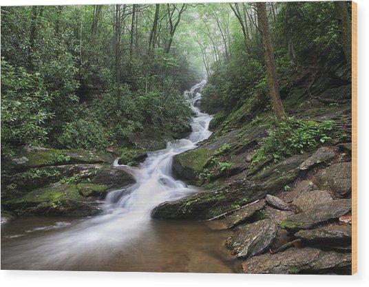 Roaring Fork Falls Wood Print