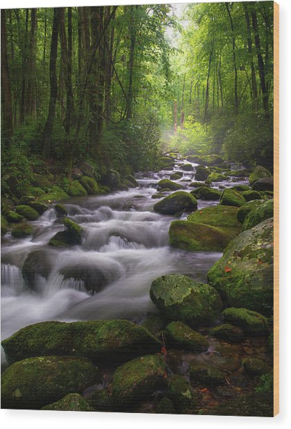 Great Smoky Mountains Roaring Fork Gatlinburg Tennessee Wood Print